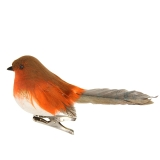 Gisela Graham Feather Robin On Clip Dec